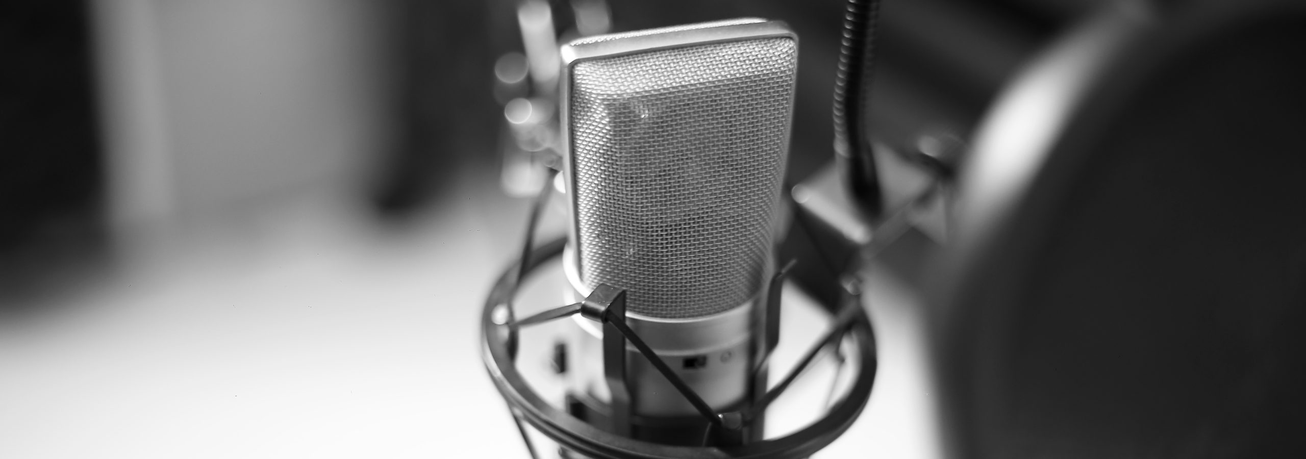 voice-over microphone